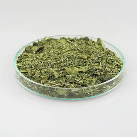 Bio Mate Tee - META MATE RAW 10kg Karton lose Blätter - gefriergetrockneter Mate Tee aus Brasilien (Superfood)